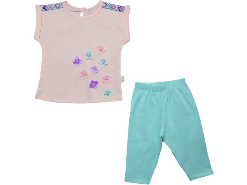 167 Wholesale flower embroidery t-shirt with trouser set for girl kids clothes (6-12-24 month)