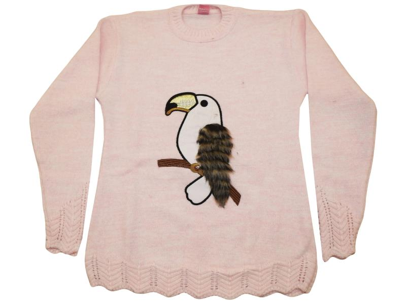 Prrot printed sweater for children 10-12-14 age